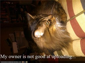 My owner is not good at uploading...