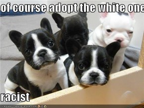 of course adopt the white one  racist