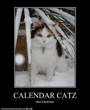 CALENDAR CATZ