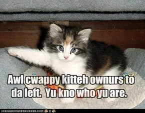 Awl cwappy kitteh ownurs to da left.  Yu kno who yu are.