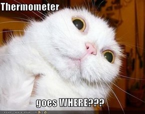 Thermometer  goes WHERE???
