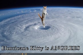 Hurricane Kitty is ANGREES