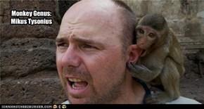 Monkey Genus:Mikus Tysonius