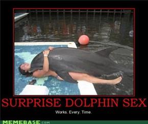 SURPRISE DOLPHIN SEX
