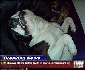 Breaking News - Breakin Dawn sinkin Teeth in U at a Screen nears U!