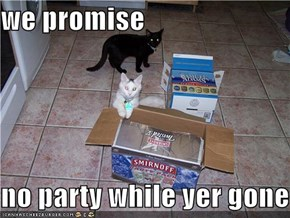 we promise  no party while yer gone