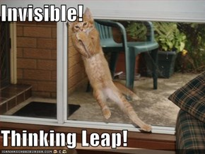 Invisible!  Thinking Leap!