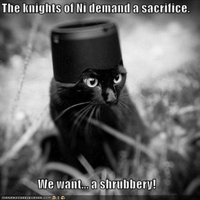 The knights of Ni demand a sacrifice.  We want... a shrubbery!