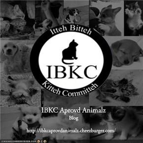 Teh IBKC Blog