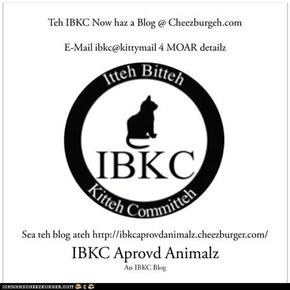 Teh IBKC's Noow Blog