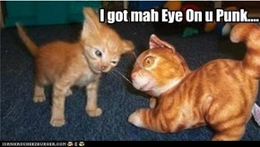 I got mah Eye On u Punk....