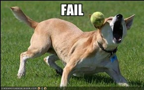 All time classic : Dog catch Fail
