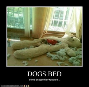 DOGS BED