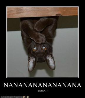 LOLcats: Ai Hads a Robin, Butt (!) Ai Eeted Him :(
