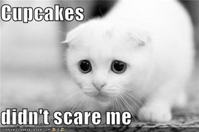 Cupcakes  didn't scare me