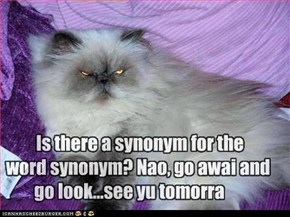 Is there a synonym for the     word synonym? Nao, go awai and go look...see yu tomorra