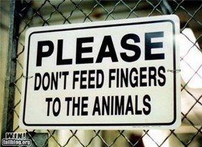 Zoo Sign Win.