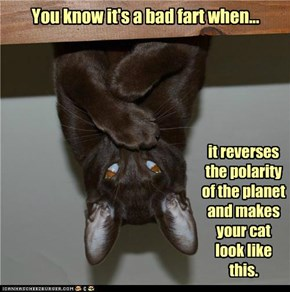 You know it's a bad fart when...