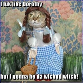 I luk like Dorothy  but I gonna be da wickud witch!