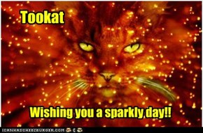 Wishing you a sparkly day wiff teh MajikKittehz