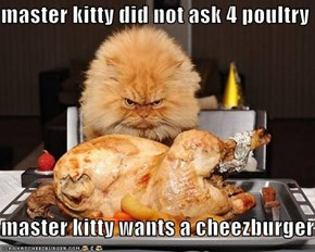 master kitty did not ask 4 poultry  master kitty wants a cheezburger