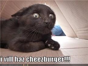 i vill haz cheezburger!!!