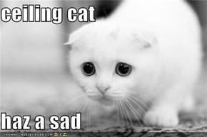 ceiling cat  haz a sad