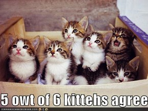 5 owt of 6 kittehs agree