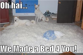 Oh hai...  We Made a Bed 4 You!