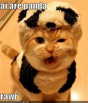 ai are panda  rawr