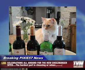 Breaking PIXIE57 News - CELEBRATIONS ALL AROUND FOR THE NEW CHEEZBURGER SITES....The hardest part is choozing ur winez.,........
