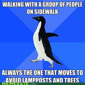 Socially Awkward Penguin: Impromptu Obstacle Course