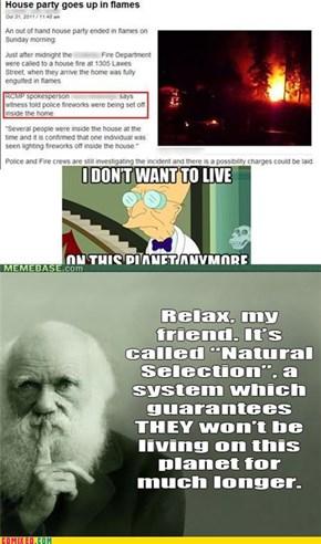 Darwin Knows