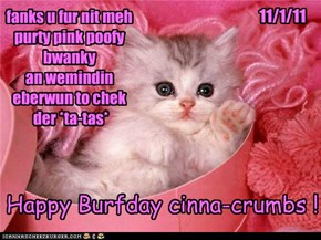 Happy Burfday cinna-crumbs