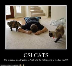 CSI CATS