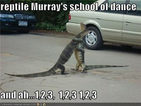 reptile Murray's school of dance  and ah...1,2,3,  1,2,3 1,2,3