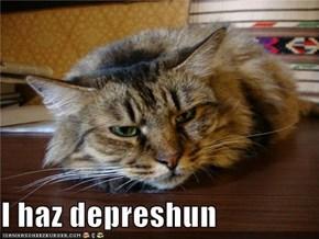 I haz depreshun
