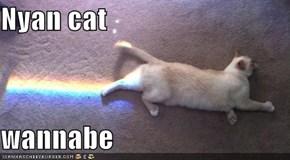Nyan cat  wannabe
