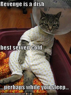 Revenge is a dish  best served cold ...perhaps while you sleep…