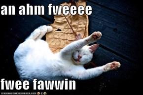 an ahm fweeee  fwee fawwin