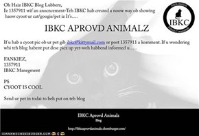 An IBKC Anonkment
