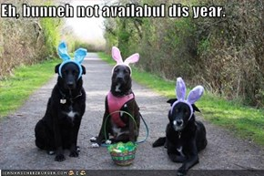 Eh, bunneh not availabul dis year.