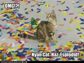 Nothing beats a Nyan Pinata....cept a big stick!