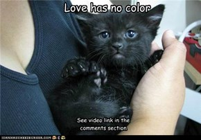 Love has no color