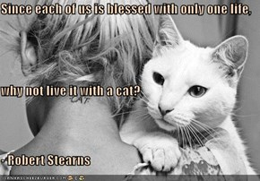 Since each of us is blessed with only one life,  why not live it with a cat?  - Robert Stearns