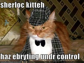 sherloc kitteh  haz ebryting undr control