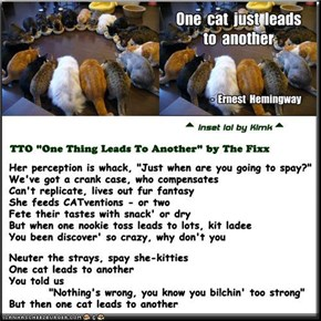 """One Cat Leads To Another"" (TTO ""One Thing Leads To Another"" by The Fixx)"
