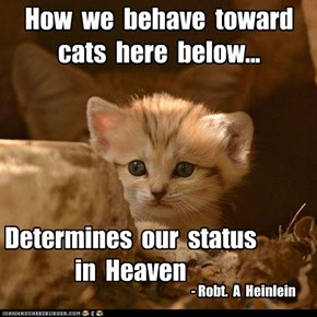 Famous cat quotes that deserve a capshun!....