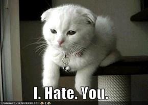 I. Hate. You.