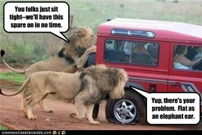 Roadside Assistance of the Serengeti